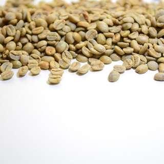🚚 綠咖啡精油