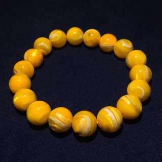 佛教聖物 黃金硨磲 硨磲貝 10mm*18 / 29g