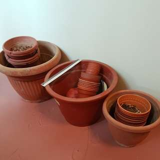 Plastic Flower Pots to clear