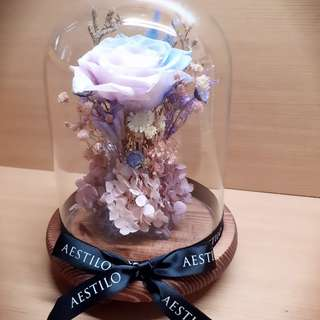 Sold Out🌸Preserved Led Flower Dome🌸 #Uob Paynow