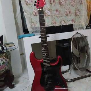 Fernandes Guitar The Function