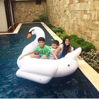 Giant Float Swan READY STOCK