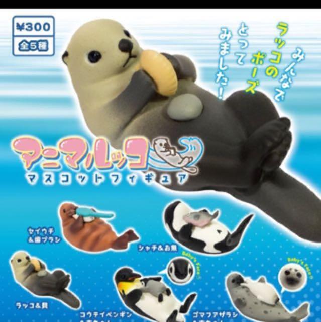 扭蛋 轉蛋 海瀨 海獅 海豹