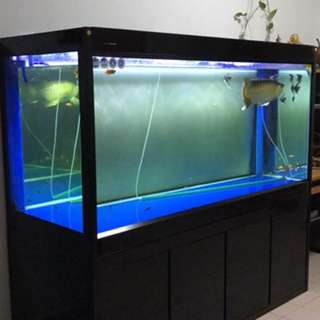 "Fish tank 5ft9""x2ft5""x5ft3""x2ft9""(glass height)"