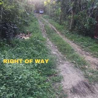 RUSH Residential Lot for Sale With Coconut Trees Near De Lasalle Lipa Rob Lipa