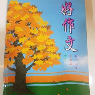 Chinese model compo for secondary