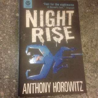 Special: NIGHT RISE by Anthony Horowitz