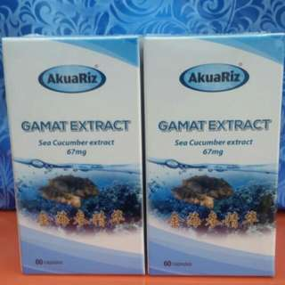 Gamat Extract