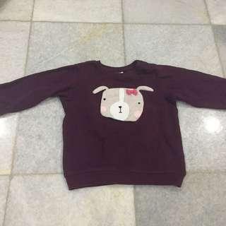 Sweater doggie