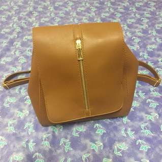 Penshoppe Leather Back Pack Bag