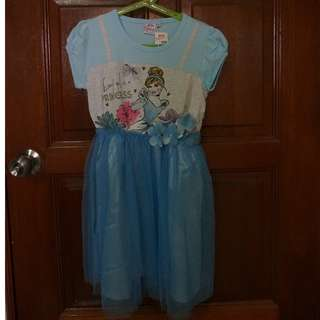 Brand New Disney Princess Dress