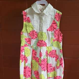Pl Gingersnap dress