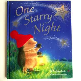One Starry Night- A Bedtime Hardcover Storybook