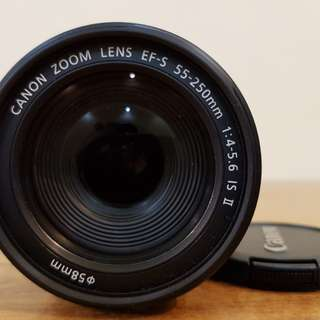 Canon EF-S 55-250mm IS Lens.