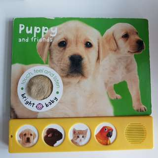 Interactive Touch Feel and Listen Pet Animal Book
