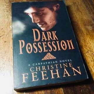 Dark Possession by Christine Feehan