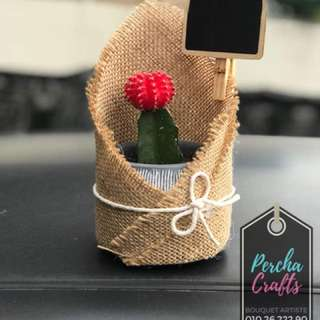 Cactus Table Deco with personalized tag