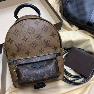 Authentic Louis Vuitton Mini Backpack Reversed