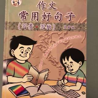 Chinese essay book