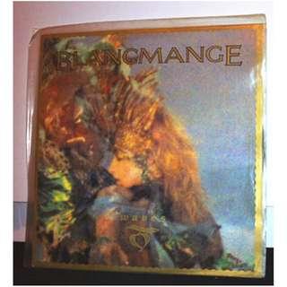 "英國絕版黑膠唱片十二吋 EP (Blancmange ----Waves{Remix}/Business Steps/Game Above My Head) 1983 12"" single lp"