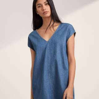 Aritzia / Golden by TNA Arnoldo Dress (XS)