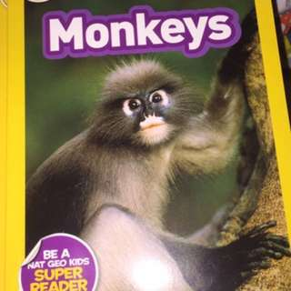 BN national geographic kids