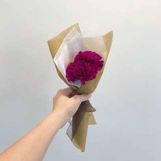 Simple Carnation bouquet