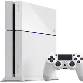 PS4 Console (No controllers)