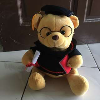 Graduation Brown Bear