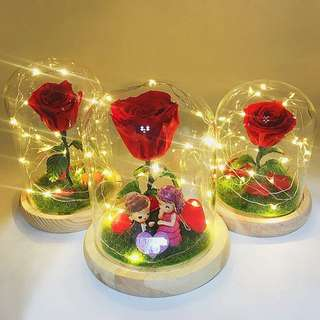 Real preserved rose in dome shape glass with fairy lights