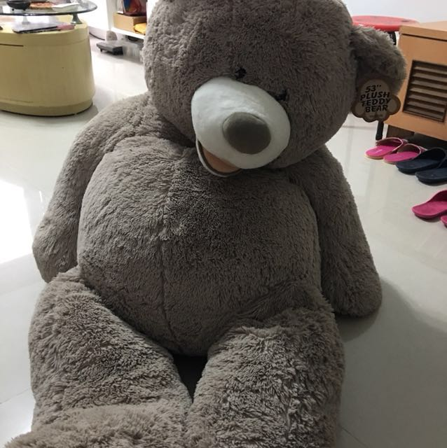好市多53吋大熊