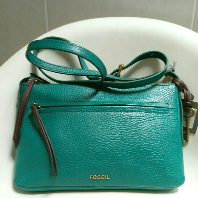 Fossil small xbody