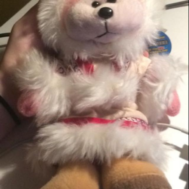Miki the Eskimo Bear