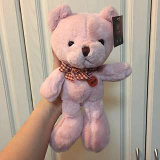 NEW! Millenial Pink Small Teddy Bear