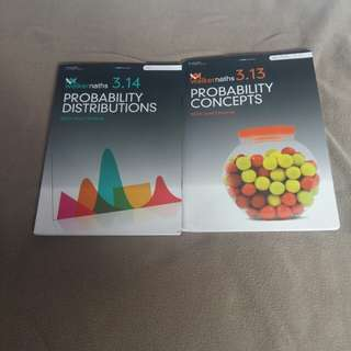 Level 3 statistics workbooks