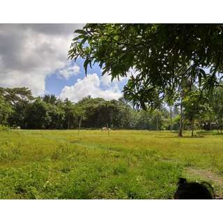 Residential Lot for sale Lobo Batangas