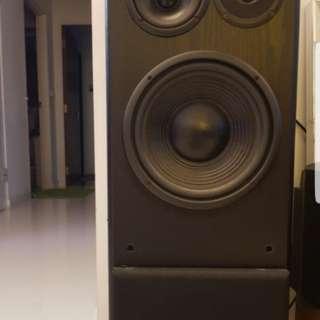 Robertson Audio silver 25 speaker
