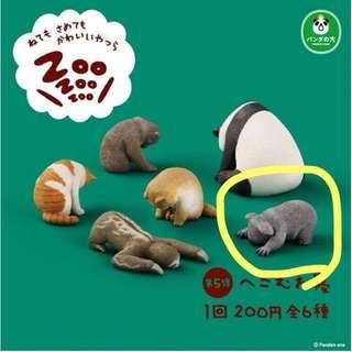 🚚 休眠 轉蛋扭蛋🥚動物園貓🐱刺蝟🦔無尾熊🐨樹懶 貓熊🐼猴子🐒狗狗🐕