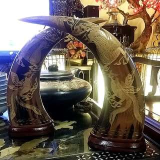 Big Vintage Buffalo  Horn  Carvings Dragon Phoenix  A Pair