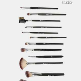 Aoa 12pcs pm brush set