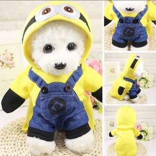 Pet minion clothes/costume