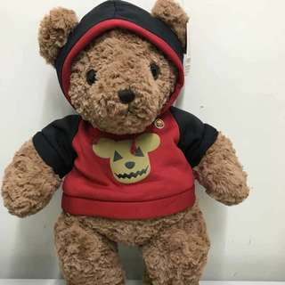 Hoodies Teddy Bear