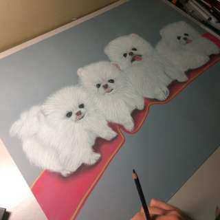 Pastel color drawing - Dog