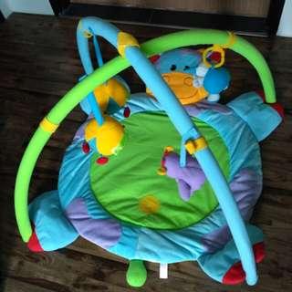 Baby Gym / Play Mat