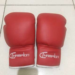 10oz Champion Boxing Gloves
