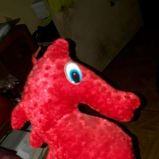 Seahorse in red stuffed toy