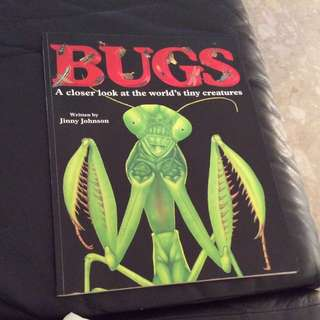 Biggest Science Colourful Book- BUGS A Closer Look At The World's Tiny Creaturs
