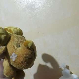 Moose stuffed toy