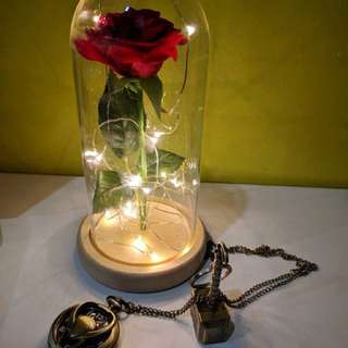 Beauty and Beast inspired Eternal rose Table Lamp