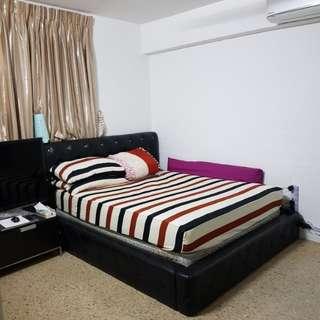 Very cozy common room; friendly housemates